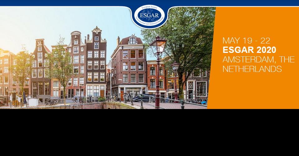 프라하 유럽 소화기복부방사선 학회ESGAR 2016Annual Meeting of the European Society of Gastrointestinal and Abdominal Radiology
